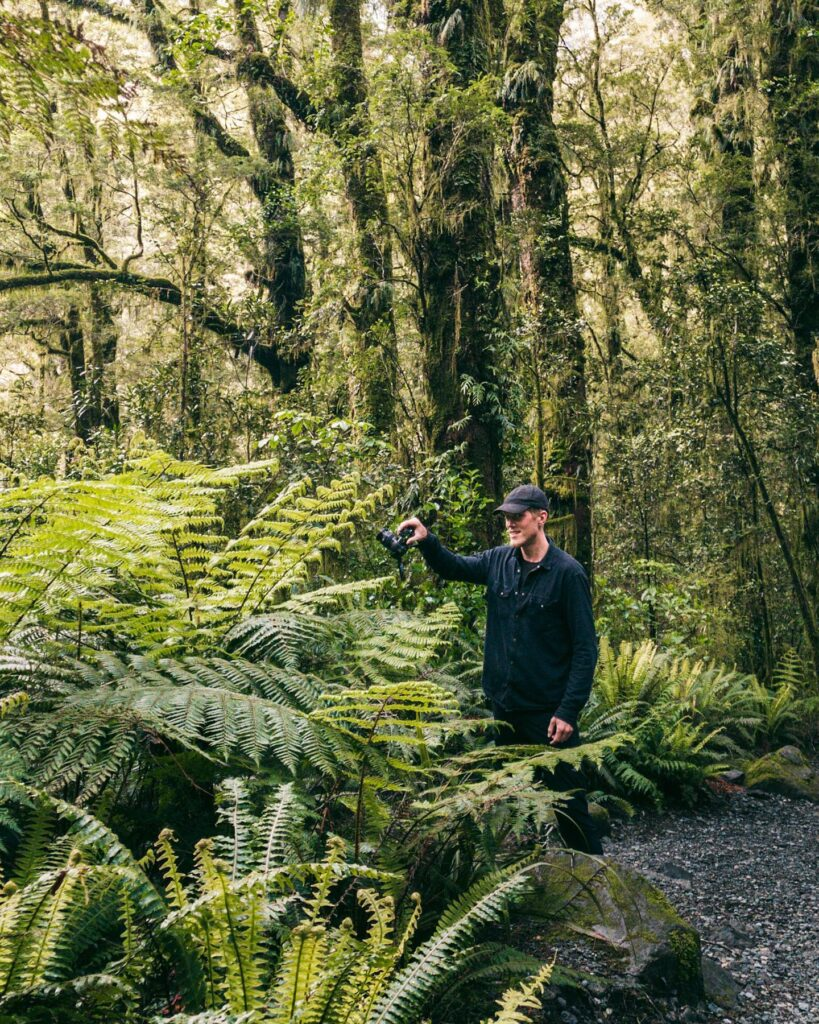 Bare et par billeder fra New Zealand