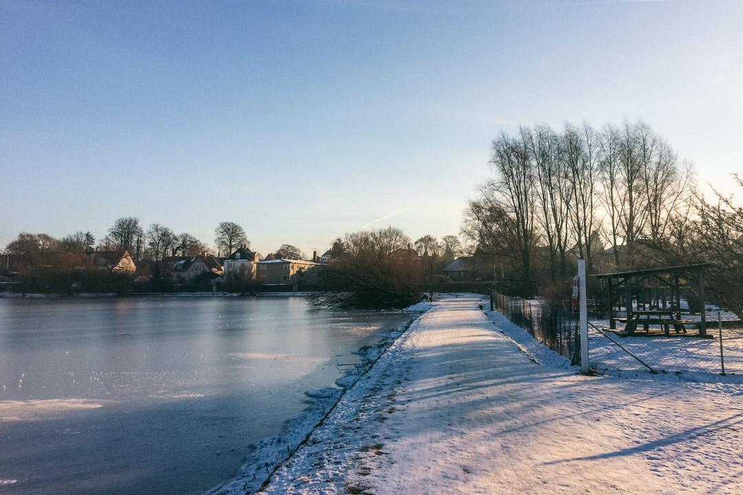 Gentofte sø om vinteren