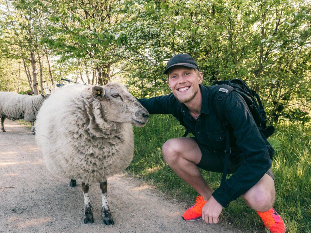 De 26 bedste løberuter i København & omegn (til korte + meget lange ture)