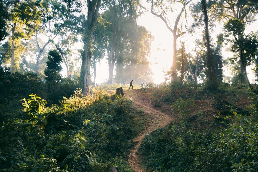 <em>Link:</em> Historien om hvorfor vi har lavet en dokumentarfilm om bæredygtig kaffe